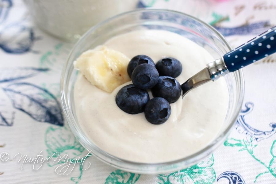 Homemade Vegan Yogurt