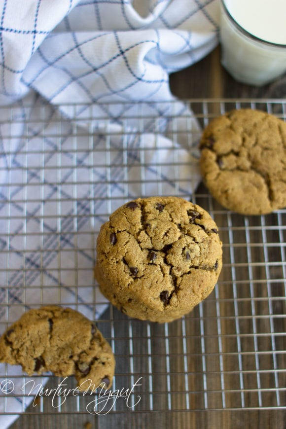 soft and chewy paleo chocolate chip cookies