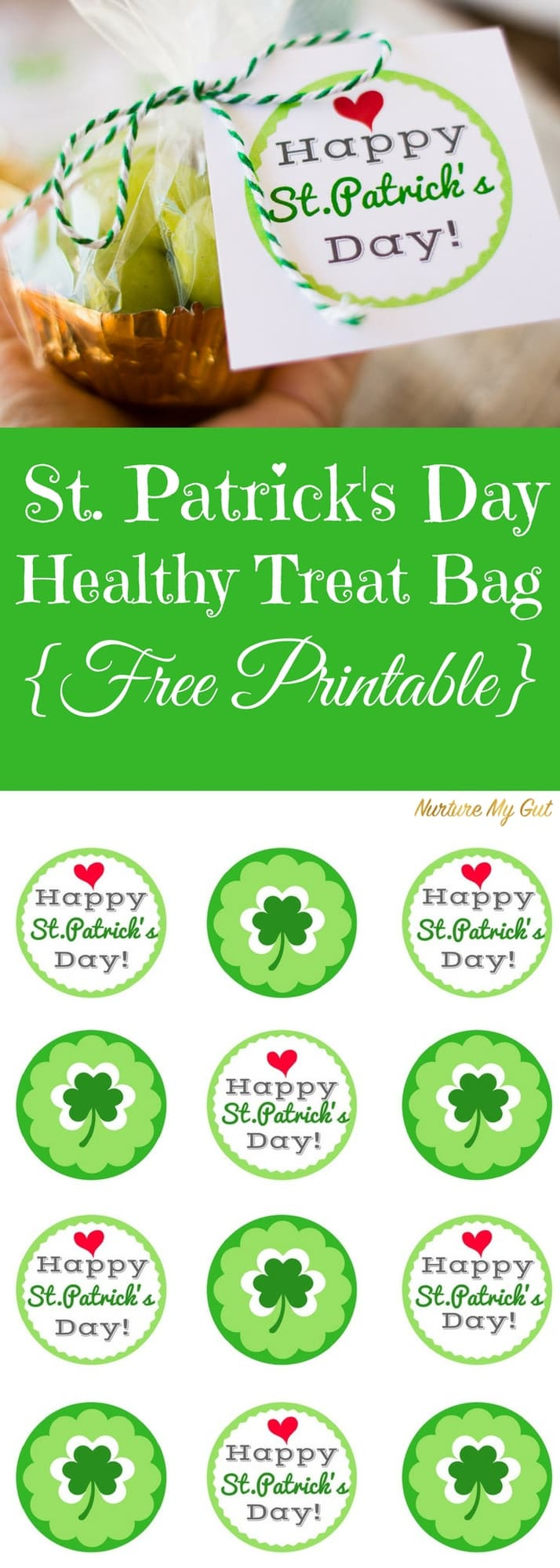 St. Patrick's Day Healthy Treat Bag