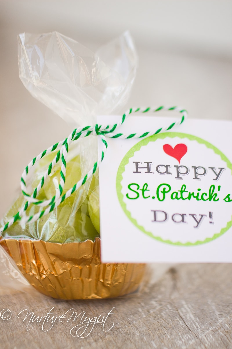St. Patrick's Day Healthy Treat bag with free Printable