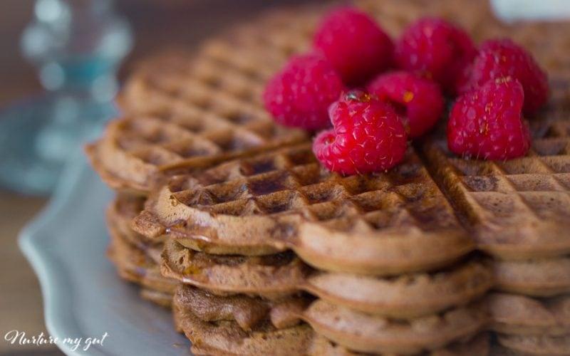 Gluten Free Chocolate Waffles {Dairy Free/Sugar Free}