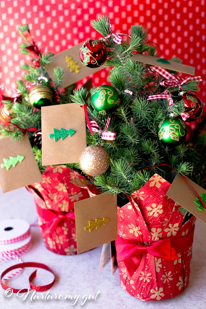 Christmas Money Tree-A Brilliant Way to give Cash for Christmas