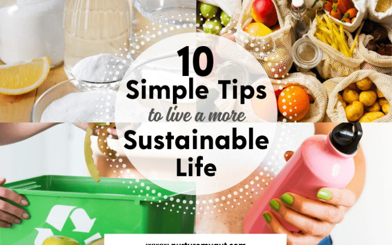 10 Simple Tips to Live a More Sustainable Life