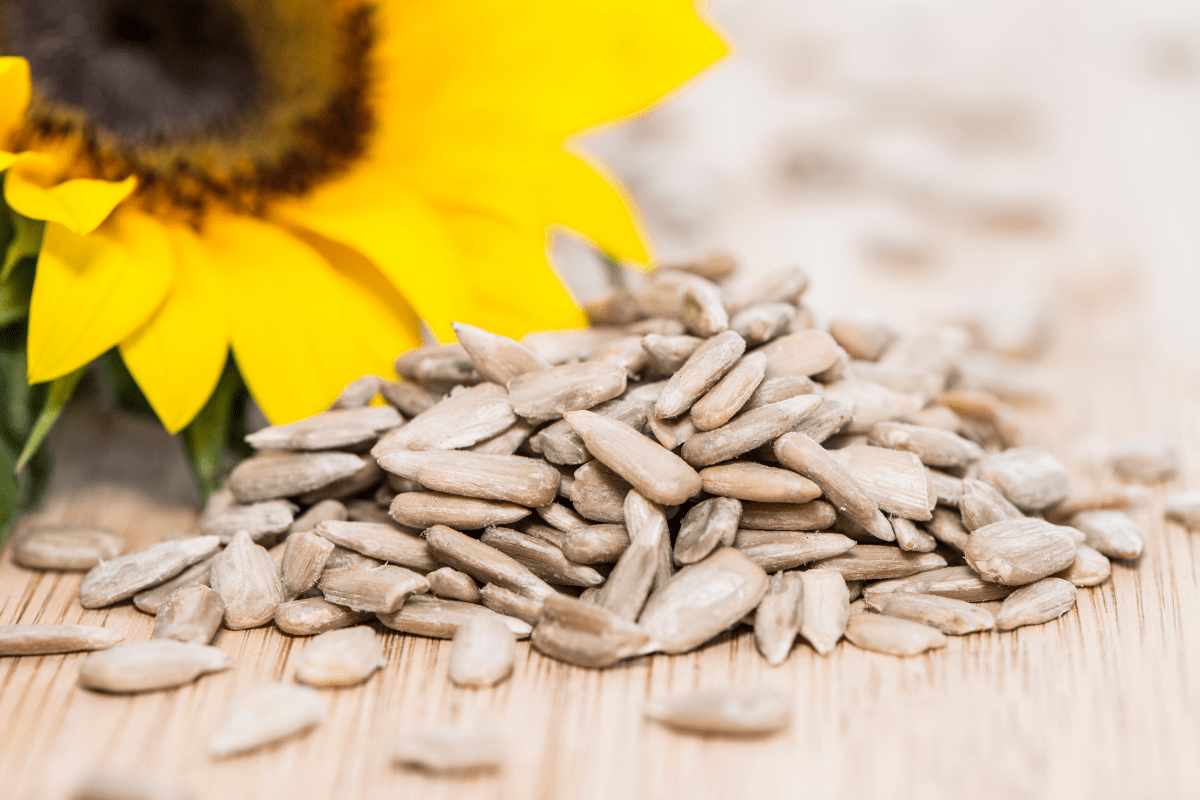 whole sunflower seeds